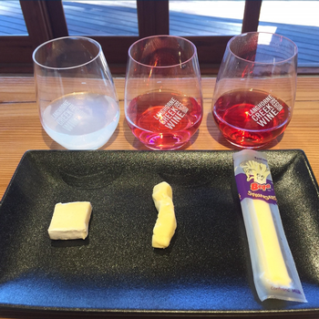 Kids Cheese and Cordial Flight